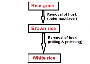 brown rice to white rice