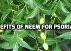 Neem for Psoriasis